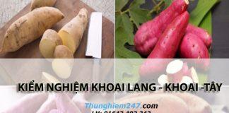kiem-nghiem-khoai-lang-khoai-tay-2